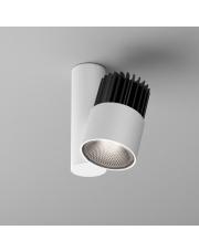 Reflektor natynkowy ROLL simple LED HP AQform różne kolory