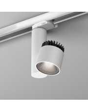 Reflektor na szynoprzewód ROLL simple LED MP AQform różne kolory