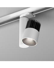 Reflektor na szynoprzewód ROLL simple LED HP AQform różne kolory