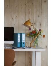 Oświetlenie idealne do nauki - funkcjonalne lampki biurkowe